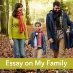 essay on my family