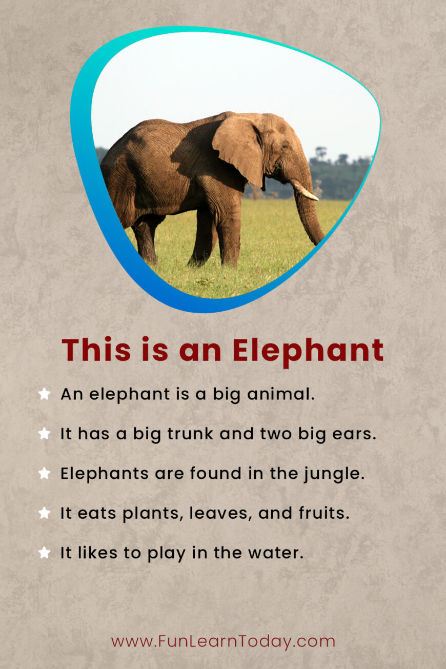 This is an elephant