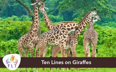 Ten Lines on Giraffes